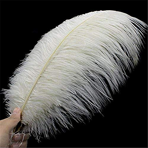 Coceca 10PCS White Ostrich Feathers 16-18inch 40-45cm for Wedding, Party, DIY