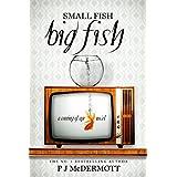 Small Fish Big Fish: A Coming of Age Novel
