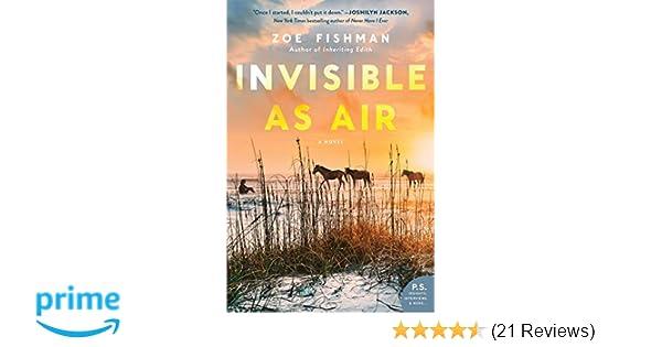 Amazon Com Invisible As Air A Novel 9780062838230 Zoe