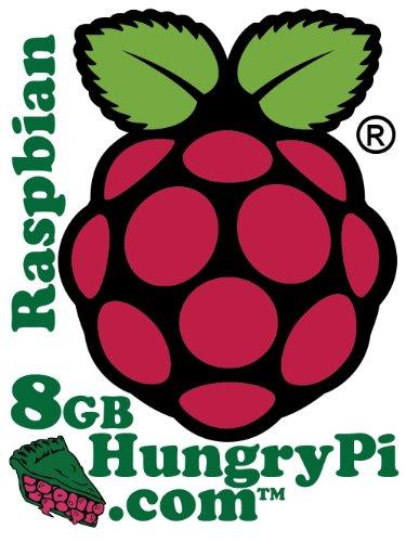 Preloaded Raspberry MicroSD Adapter Raspbian