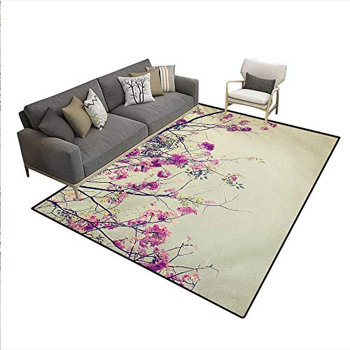 Nantucket Floral Picture Frame - Rug,Floral Flowers Branches Sakura Blooms Cherry Blossoms Spring Time Photo,Area Carpet,Cream Fuchsia Brown,5'x7'