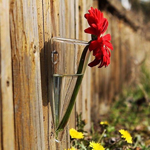 Siyaglass Hanging Clear Glass Taper Wall mount Vase Air Planrt Flower Terrarium for Home Garden Decor Pack of 2