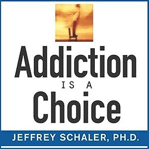 Addiction Is a Choice Audiobook