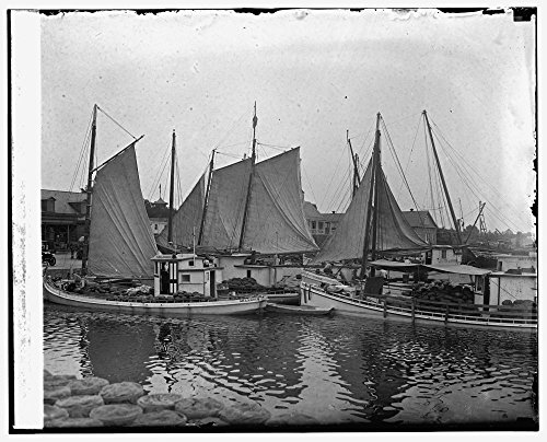 1925-photo-1st-fleet-of-watermelons-from-nearby-farms-8-11-25