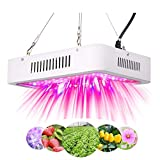 600W LED Grow Light for Indoor Plants,Green House Lights,Grow Lamps Panel with Adjustable Rope,Full Spectrum UR and IR for Indoor Plants,Greenhouse, Veg and Flower ((Actual Power Consumption 100W)