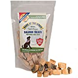 Premium Salmon Dog Treats Made in USA Only - One Ingredient: Wild Caught American Salmon - Freeze Dried, Human Grade - No Additives or Preservatives - Grain Free - Purr-fect Healthy Cat Snack too