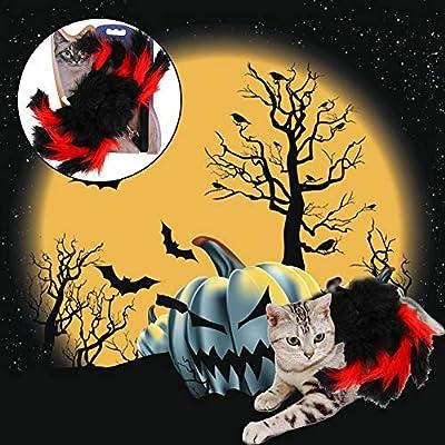 KEIBODETRD Arnés Y Correa para Gato,Pet Spider Strap Strap Cat ...