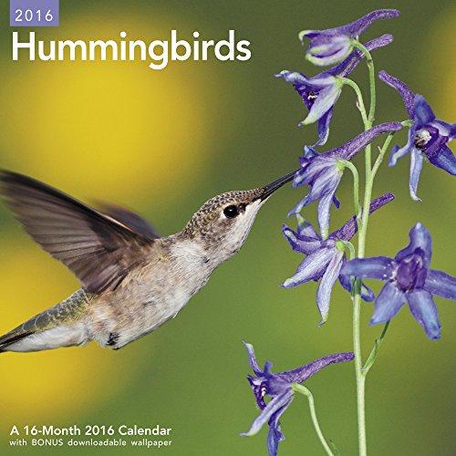 UPC 038576371163, Hummingbirds Wall Calendar (2016)