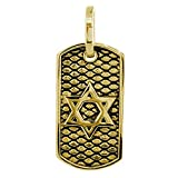 36mm Hardcore Metal Snake Skin Star of David Pendant Dog Tag in 14K Yellow Gold