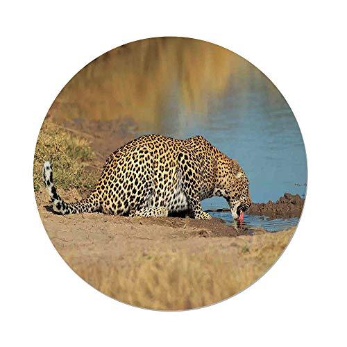 African Waterhole Camera - 4