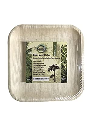 Eco Friendly Palm Leaf 8 Inch Square Plates: 100% Natural, Compostable & Biodegradable, 25 counts