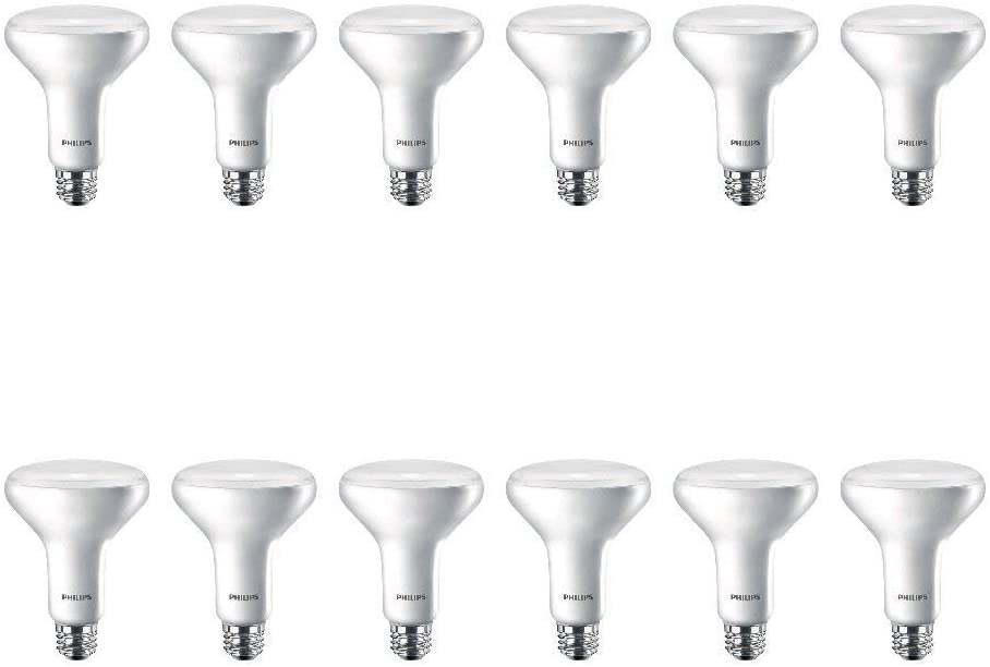 Philips LED 541045 LED Light Bulb, 12 Pack, 12 Piece