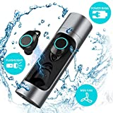True Wireless Earbuds,TIAMAT Force Sports Wireless Bluetooth Headphones, Bluetooth 5.0 IPX6 7 Waterproof Power Bank Portable Fan USB Flashlight Long Lasting Earbuds