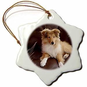 3dRose Rough Collie Puppy Snowflake Porcelain Ornament, 3-Inch 24