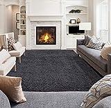 "Ottomanson Collection shag area rug, 5'3"" x"