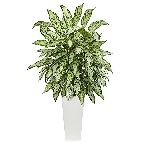 Nearly Natural Silver Queen Artificial Plant in White Tower Planter, Green by Nearly Natural