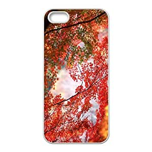 Maple Tree Branch iPhone 4 4s Cell Phone Case White oqml