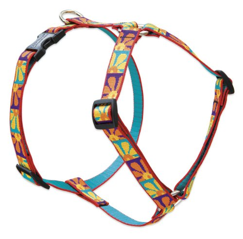 """LupinePet Originals 3/4"""" Crazy Daisy 12-20"""" Adjustable Roman Dog Harness for Small Dogs"""