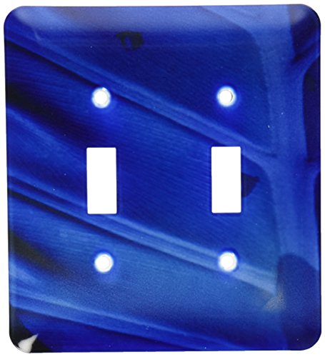 3dRose lsp_100536_2 Tears Of Cobalt With Blue Leaf Double Toggle Switch