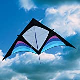 Into The Wind Dan Leigh Cool XFS Delta Kite