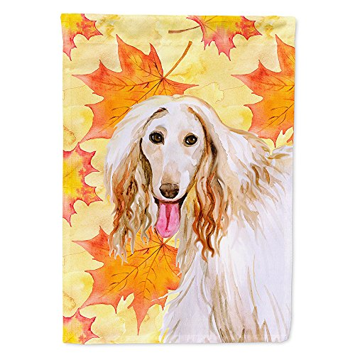 (Caroline's Treasures BB9963CHF Afghan Hound Fall Decorative Canvas Outdoor Flag, House Size Multicolor )