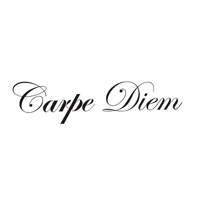 Mhdxmp Carpe Diem Vinilo Arte Tatuajes De Pared Carácter Etiqueta ...