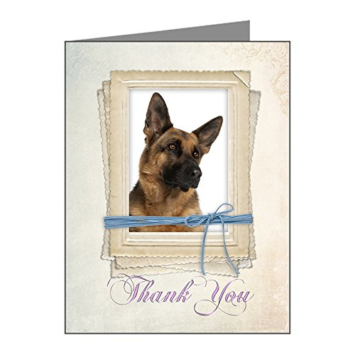 CafePress German Shepherd Thank You Cards (Pk Of 10) Blank Note Cards (Pk of 10) Matte ()