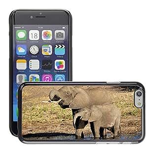 """Print Motif Coque de protection Case Cover // M00238902 Elefante Agua elefante Cría de elefante // Apple iPhone 6 6S 6G PLUS 5.5"""""""