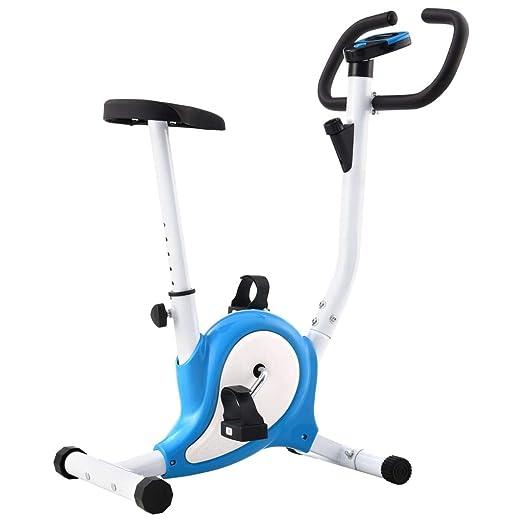 Festnight Bicicleta Estática con Resistencia de Cinta Azul y ...