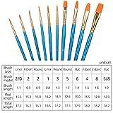 Amazon Basics Art Paint Brush Set, 10 Different