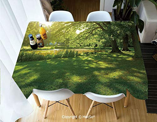 Printed Table Cloth, Rectangle Table Cover in Washable Polyester for Parties, Holiday Dinner, Wedding & More,Green,Summer Park in Hamburg Germany Trees Sunlight,53