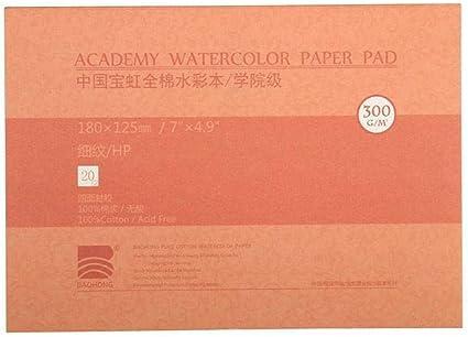 20 hojas de papel de acuarela de algodón, 3 tipos y 2 tamaños a ...