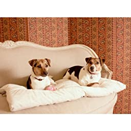 2 in 1 All Season Crate Bedding, X-Large Fits Midwest 42\