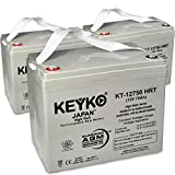 Power Patrol SLA1175 12V 75Ah SLA Sealed Lead Acid HIGH RATE Deep Cycle Battery for UPS Wheelchair Scooter and Mobility Genuine KEYKO - T1 Terminal- 3 Pack