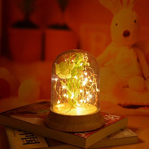 Fiery Trees & Silver Flowers LED Copper Wire Dome Light with Wood-grain Pedestal Home Decoration Gift ()