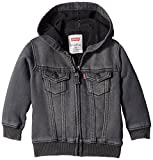 Best Levi's Clothing For Boys - Levi's Baby Boys' Knit Trucker Hoodie,Pebble Grey, 12 Review