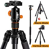 "TARION Q550 Camera Tripod 61"" with Ball Head 360° Rotation Aluminum Tripod Monopod"