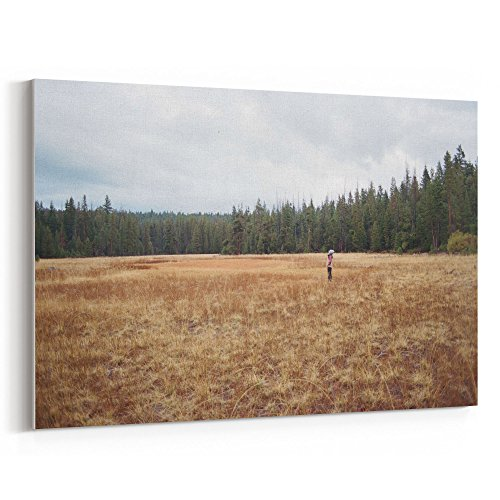 Westlake Art - Forest Cloud - 5x7 Canvas Print Wall Art - Canvas Stretched Gallery Wrap Modern Picture Photography Artwork - Ready to Hang 5x7 Inch (Sunflower Bucket Grow)