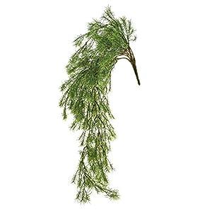 FloristryWarehouse Artificial Springeri Asparagus Fern Trailing 24 Inches 27