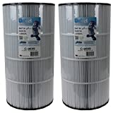 Unicel C-9699-2 Replacement Filter Cartridge (2 Pack)