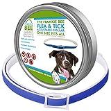 Flea Collar for Dogs Tick Collar - 8 Mo. Flea and ...