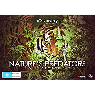 Nature's Predators Collector's Set DVD