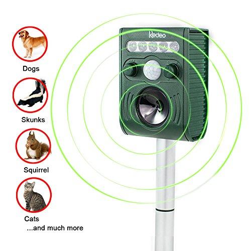 redeo-ultrasonic-animal-repeller-solar-pest-repeller-repel-cat-squirrel-deer-skunk-chipmunk-rabbit-a