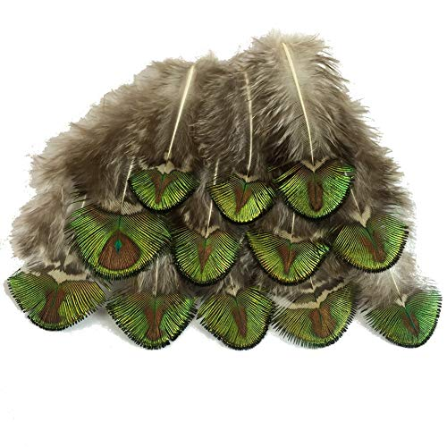 Sowder 20pcs Gold/Green Peacock Pheasant Plumage Feathers 1-4 Inches Home Wedding Decoration