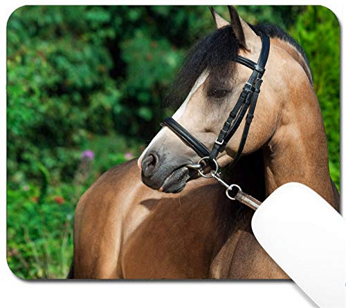 MSD Mouse Pad with Design - Non-Slip Gaming Mouse Pad - Image ID 36301649 Portrait of Beautiful Buckskin Welsh Pony