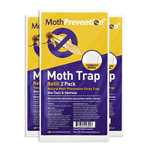 POWERFUL CLOTHES MOTH TRAPS 6-Pack   Odor-Free & Natural from MothPrevention   Best Catch-Rate Clothes Moth Traps on The Market! - Results Guaranteed  Also use as Replacement Strips for our Moth Boxes (Addition Ideas Patio Covered)