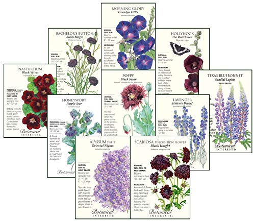 (Botanical Interests Purple Passion Flower Seed Collection - 10 Packets with Gift Box)
