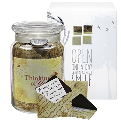 Glass KindNotes INSPIRATIONAL Keepsake Gift Jar of Messages for Him or Her Birthday, Thank you, Anniversary, Just Because - Inspirational Scripts Thinking of - Gifts Just For You