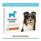 Wisdom Panel 3.0 Canine DNA Test - Dog DNA Test Kit for...