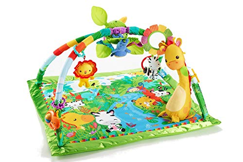 Fisher-Price Music & Lights Deluxe Gym